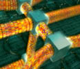 Optiske fibre som danner en supermotorvei