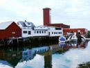 Seafood i Brønnøysund