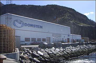 Domstein ASA er største aksjonær i Fjord Seafood
