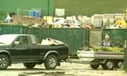 Elen Marie Sanden har ikke søppel og mener hun bør slippe å betale avgift for det. (Illustrasjonsfoto)