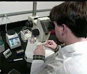 Forskerne benekter at de vil bruke teknikken til å reprodusere mennesker. (Foto: AP)