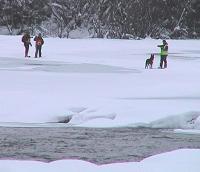 Letemannskaper har funnet sport som går fra veien til elva Hemsil. (Foto: Gunnar Grimstveit)