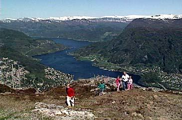Frå Hafstadfjellet har ein god utsikt over Førdejorden. Vegen til Naustdal går langs fjorden til høgre i biletet. Deler av Førde sentrum er å sjå til høgre i biletet, medan Halbrendslia er til venstre. (Foto: NRK)