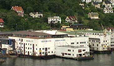 Skaar & Co. og Brødrene Myhre sine mottaksanlegg i Måløy. (Foto: NRK)