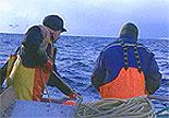 Mange fiskarar forlét fiskebåtane for å få betre arbeidsvilkår på forsyningsbåtar. (Foto: NRK)