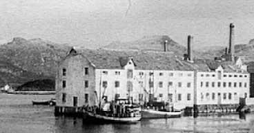 Hermetikkfabrikk i Florø i 1947.