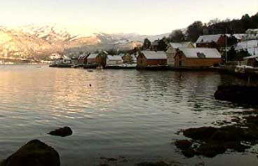 Hestenesøyra. (Foto: NRK)