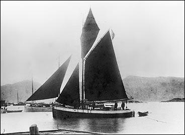 M/S Anna i 1903. Skøyta vart nytta i fiske til 1942. (Foto © Fylkesarkivet)
