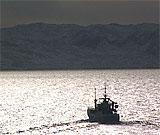 Lave doser radioaktivitet i havet kan i teorien gi lavere fiskefangster i framtida.