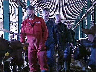 Fjøsen til dei sju gardbrukarane på Hilde var den første fellesfjøsen i fylket.