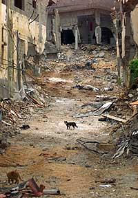 Det er enorme ødeleggelser i Jenin. (AP-Scanpix-foto)