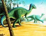 (Ill: Paleontologisk Museum, Oslo)