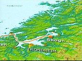 En rørledning inn Trondheimsfjorden skal etter planen gi gass til kraftverket på Skogn.