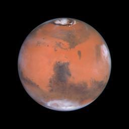 VIL TIL MARS: President Bush vil at mennesker en gang skal sette fotavtrykk på Mars, og har bedt NASA rette sin innsats mot det målet.