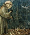 Frans og fuglene (Giotto)