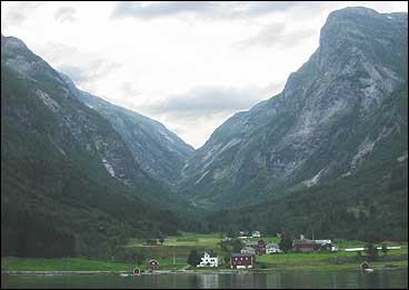 Årleg vart eit par tusen dyr drivne gjennom Sværeskaret.  (Foto: Arild Nybø, NRK)