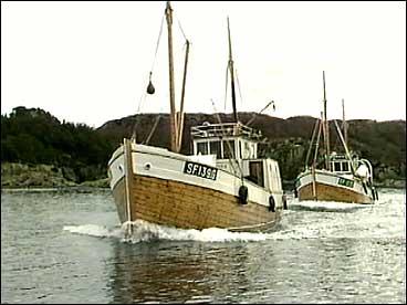 Reketrålarar på Furenes. (Foto: NRK)