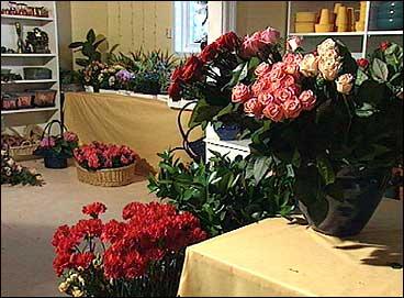 Wilberg starta først blomsterbutikk i desse lokala på Mjømna. Seinare vart forretninga til SolGul Blomst i Eivindvik og på Hardbakke. (Foto: Stein Magne Os, NRK)