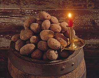 Vi snakker mye om hvordan ribba skal være, men hva med poteten? Foto: Ragge Strand, OFG