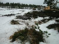 Sørvest og regn tærer på snøen på skistadion på Skaret.
