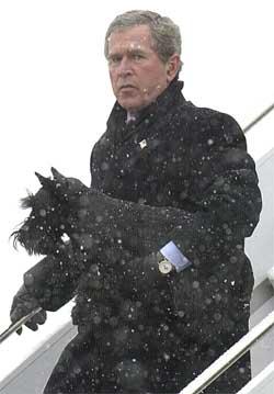 USA-president George W. Bush, her med hunden Barney, har utarbeidet en plan for styringen av Irak. (Arkivfoto: Reuters/Scanpix)
