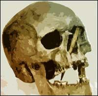 Slike hodeskalle-funn tyder på stridigheter