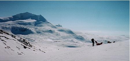 Hva med en snøscootersafari i Sulis?
