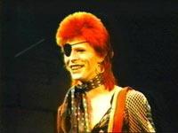 Ziggy med sjørøverlappen. Foto: Promo