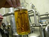 Slik ser altså biodiesel ut.