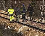 Det var et tragisk syn som møtte folkene på jernbanen.