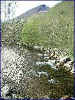 Batnfjordselva kan være fri for lakseparasitten. Foto: Gunnar Sandvik