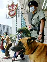 Politimann med munnbind og politihund uten i Hongkong. Foto: Kin Cheung, Reuters