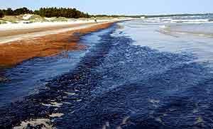 Oljelukten henger over Skåne etter at oljen ble skyllet i land på strendene. Foto: Stig-Åke Jönsson , Scanpix