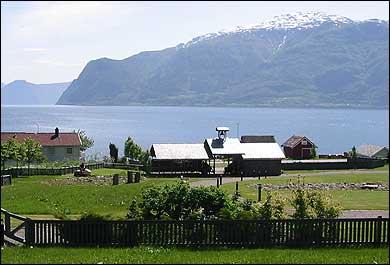 Dei utgravne gravrøysene ligg på nye kyrkjegarden på Husabø. (Foto: Arild Nybø, NRK)