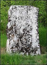 Runesteinen er frå folkevandringstida. (Foto: Arild Nybø, NRK)
