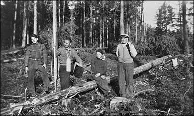 Fire menn på tømmerhogst i Heibergskogen. © Fylkesarkivet.