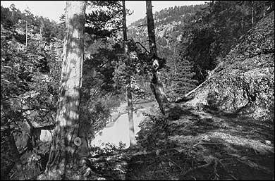 Futespranget - eller Hallaupsspranget kring 1880. (Foto © Fylkesarkivet)