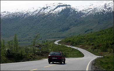 Riksvegen frå Fjærland til Sogndal går gjennom Sogndalsdalsdalen. Her ved Vatnasete. (Foto: Arild Nybø, NRK © 2003)