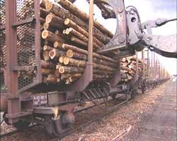 Mere tømmertransport jernbane?