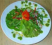 Salat med spansk pølse