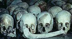Hodeskaller fra Pol Pot regime. Foto: The Dith Pran Holocaust Awareness Project,