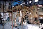 Skjelettet av Tarbosaurus blir montert
