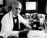 Alexander Fleming forbereder eksperimentet sitt