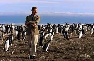 Faklandsøyene er også en del av denne historien. Her Sea Lion på kysten av Falklandsøynene som prins Charles besøkte i 1999. Foto: Dylan Martinez, AP