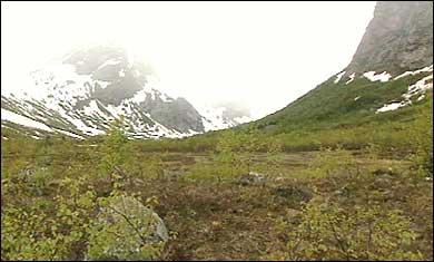 Krundalen er ein sidedal til Jostedalen der Jostedalsrypa kan ha halde til. (Foto: Atle Løkken, NRK)