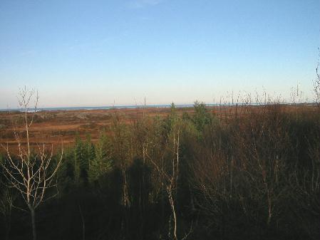 En vindmøllepark i dette området sa kommunestyret i går nei til.