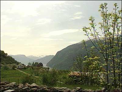 På Ornes - Urnes - skal småkongen Ragnvald ha budd. (Foto: Heidi Lise Bakke, NRK © 2003)