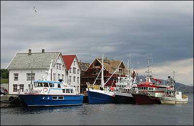 Kalvågprosjektet har ført til ny næring og byggjeaktivitet. (Foto: Arild Nybø © 2002)