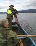 Ulovlig garnfiske langs Østfoldkysten er et årvisst fenomen. Tre garn, ulovlig satt, ble funnet i Hankøsundet før helgen.