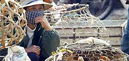 En kvinne selger kylling i Vitenam. Hun har tatt sin forhåndsregel og bruker munnbind. Foto: Scanpix
